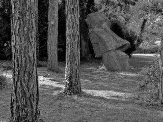écureuil - Gustav Eckart, Photographie
