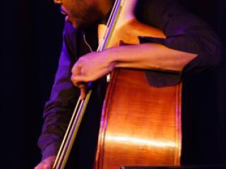 Gerald Clayton Trio - Joe Sanders 20140711 - Gustav Eckart, Fotografia