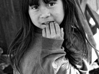 Kinder Sw 13 - Gustav Eckart, Fotografia
