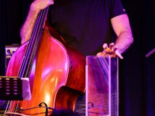 Michael Wollny Trio: Tim Lefebvre 20130814 - Gustav Eckart, Fotografia