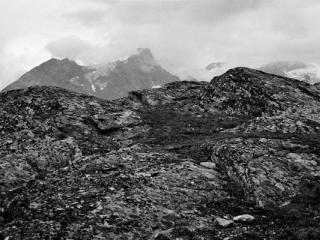 Natur 15 - Gustav Eckart, Fotografia