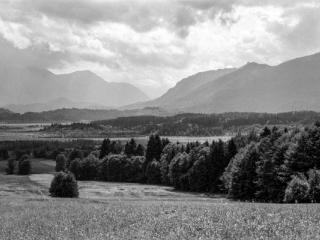 Natur 49 - Gustav Eckart, Fotografie
