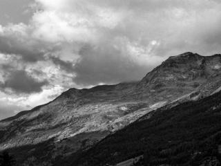 Natur 72 - Gustav Eckart, Photographie