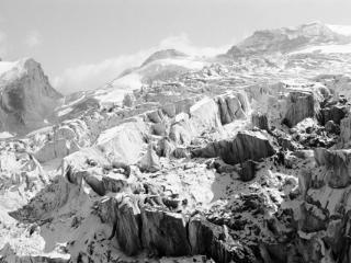 Natur 88 - Gustav Eckart, Fotografie