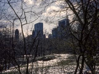 New York City 03/1984 -16 - Gustav Eckart, Photographie