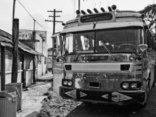 Palenque Bus - Gustav Eckart, Photographie