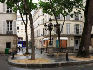 Paris 2012 06 - Gustav Eckart, Fotografia