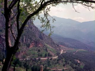 Delphi 4 - Gustav Eckart, Photography