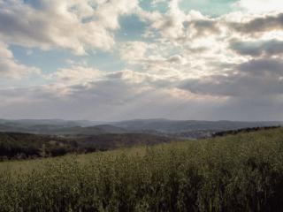 Siegerland 1985 - 03 - Gustav Eckart, Fotografie