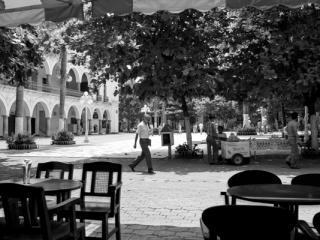 Veracruz - Gustav Eckart, Fotografia