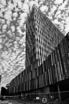 Ffm Sw 09 - Gustav Eckart, Photographie