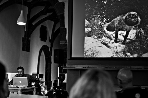 Joan Fontcuberta photographer - Gustav Eckart, Photographie