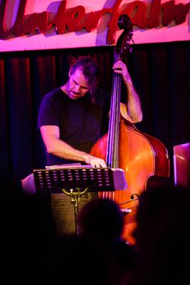 Michael Wollny Trio: Tim Lefebvre 20130814 - Gustav Eckart, Photography