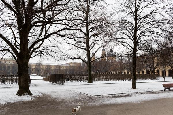 Munich 66 - Gustav Eckart, Photographie