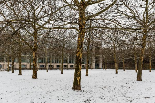Munich 72 - Gustav Eckart, Photographie
