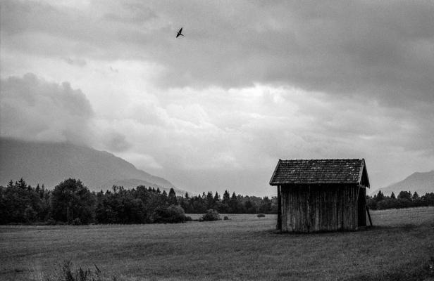 Natur 104 - Gustav Eckart, Photographie
