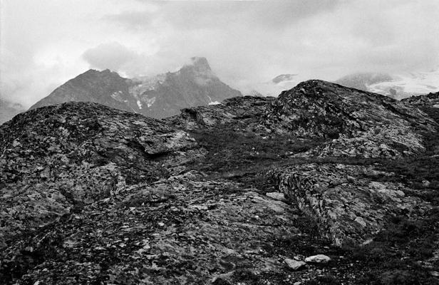 Natur 15 - Gustav Eckart, Fotografie