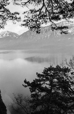 Natur 46 - Gustav Eckart, Photographie