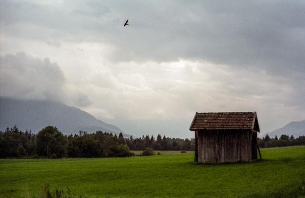 Natur 55 - Gustav Eckart, Fotografie