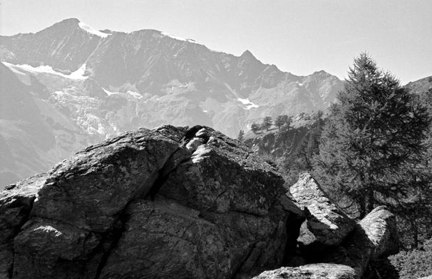 Natur 77 - Gustav Eckart, Fotografie
