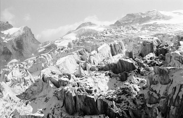 Natur 88 - Gustav Eckart, Photographie