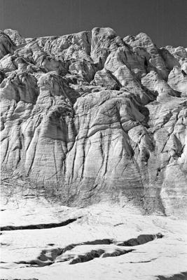 Natur 90 - Gustav Eckart, Photographie