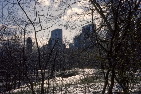 New York City 03/1984 -16 - Gustav Eckart, Photographie