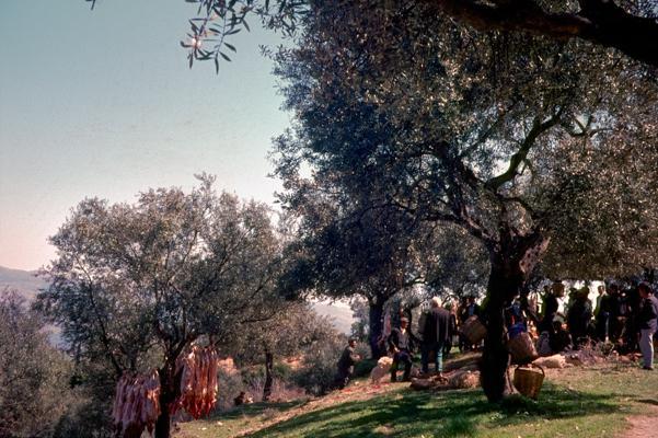 Peloponnes 1 - Gustav Eckart, Photography