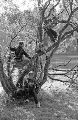 Kinder 26 - Gustav Eckart, Photographie