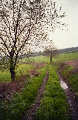 Siegerland 1985 - 15 - Gustav Eckart, Photographie