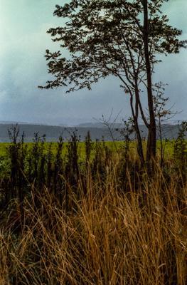 Siegerland 1985 - 17 - Gustav Eckart, Photographie